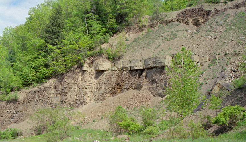 devonian period essay Geography and natural resources in ohio the devonian period, especially along the eastern shores of lake erie coal millions of years ago.